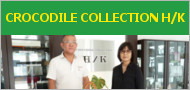 CROCODILE COLLECTION H/K
